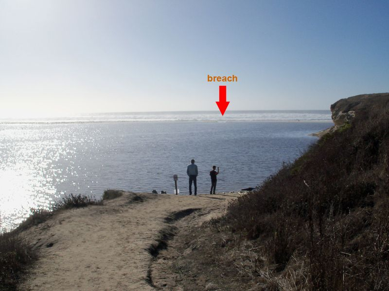 Red arrow points to the breach in the lagoon at San Gregorio State Beach.