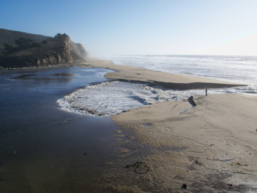 Breach in the lagoon at San Gregorio State Beach.