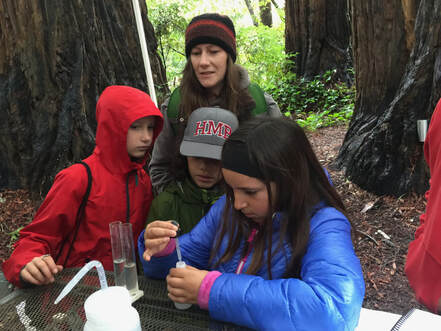 Teacher looks over students intently performing water quality test on creek water.