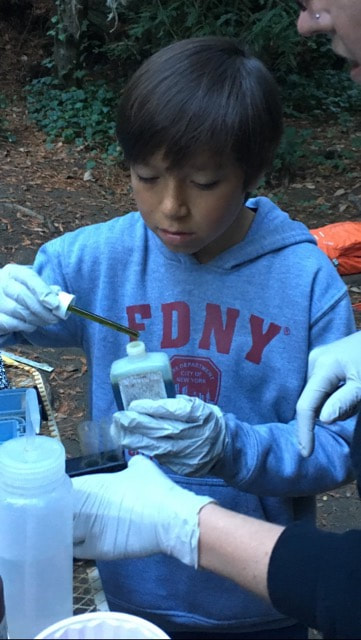 A student, holding a dropper full of green pH indicator, performs a pH test on water from the La Honda Creek.