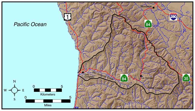 Map showing the many streams in the San Gregorio watershed.